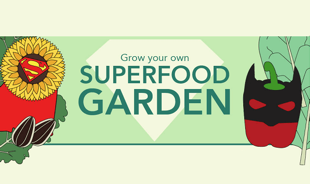 grow-your-own-superfood-garden