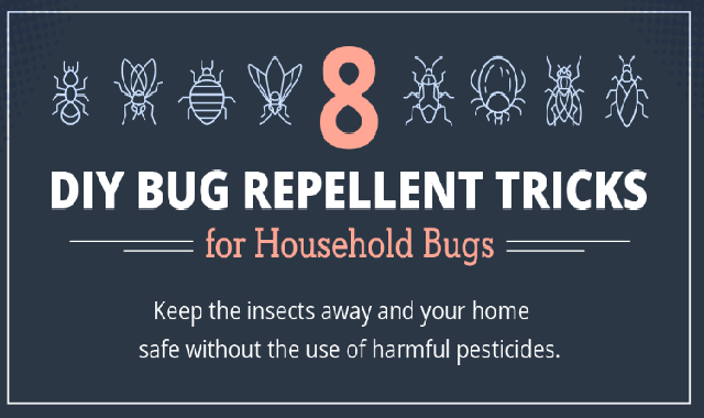 bug repellent
